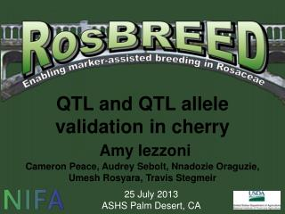 QTL and QTL allele   validation in cherry