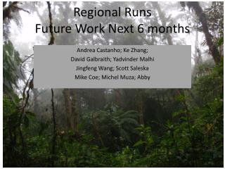 Regional Runs  Future Work Next 6 months
