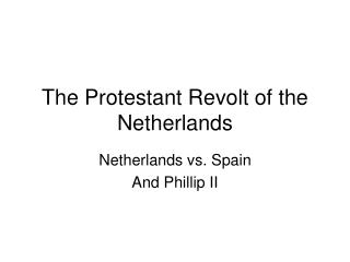 The Protestant Revolt of the Netherlands