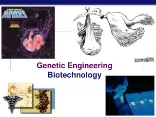 Genetic Engineering Biotechnology