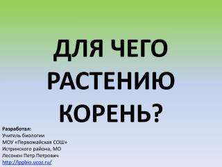 Разработал: Учитель биологии  МОУ «Первомайская СОШ» Истринского района, МО Лесонен Петр Петрович