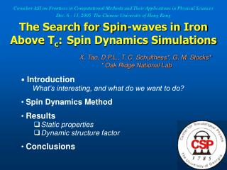 Introduction What's interesting, and what do we want to do? Spin Dynamics Method Results