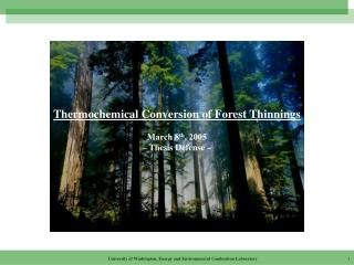 Thermochemical Conversion of Forest Thinnings March 8 th , 2005 –  Thesis Defense –