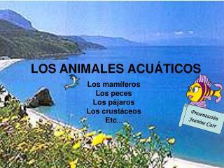 LOS ANIMALES ACU Á TICOS