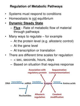 Regulation of Metabolic Pathways