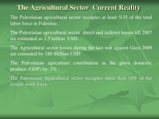 The Agricultural Sector  Current Reality