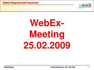 WebEx-Meeting 25.02.2009