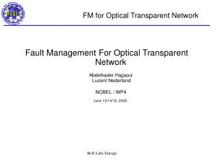 FM for Optical Transparent Network