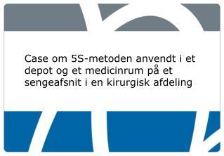 Case om 5S-metoden anvendt i et depot og et medicinrum på et sengeafsnit i en kirurgisk afdeling