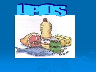 What are lipids