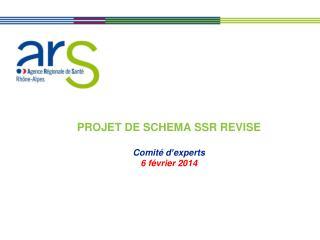 PROJET DE SCHEMA SSR REVISE Comité d'experts  6 février 2014