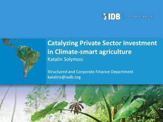 Catalyzing Private Sector Investment in Climate-smart agriculture Katalin Solymosi