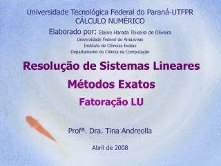 Resolução de Sistemas Lineares Métodos Exatos Fatoração LU
