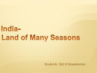 Students : Std VI Strawberries