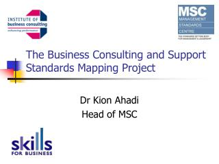 The Business Consulting and Support Standards Mapping Project
