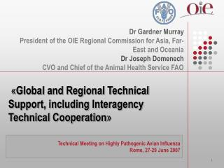 « Global and Regional Technical Support, including Interagency Technical Cooperation »