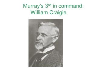 Murray�s 3 rd  in command: William Craigie