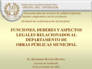 Sr. Herminio Berr íos  Berr íos Gerente de Auditor ía 22 de noviembre de 2002