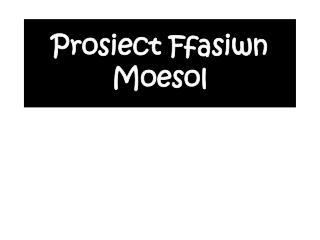 Prosiect Ffasiwn Moesol