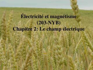 �lectricit� et magn�tisme  (203-NYB) Chapitre 2: Le champ �lectrique