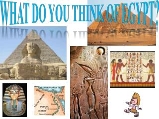 What do you think of Egypt?