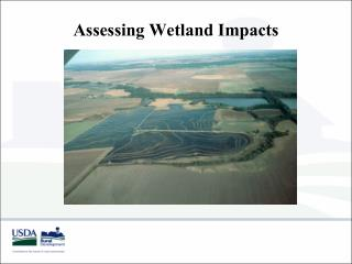 Assessing Wetland Impacts