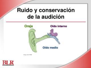 Ruido y conservación  de la audición