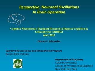 Perspective : Neuronal Oscillations  In Brain Operation