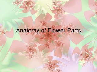 Anatomy of Flower Parts