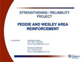 PEDDIE AND WESLEY AREA REINFORCEMENT