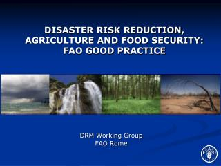 DISASTER RISK REDUCTION, AGRICULTURE AND FOOD SECURITY: FAO GOOD PRACTICE