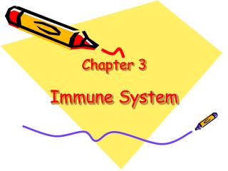 Chapter 3 Immune System