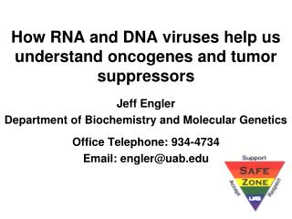 How RNA and DNA viruses help us understand oncogenes and tumor suppressors