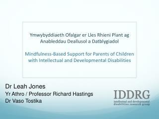 Dr  Leah Jones Yr Athro  / Professor Richard Hastings Dr Vaso Tostika