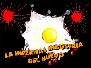 La infernal industria  del huevo