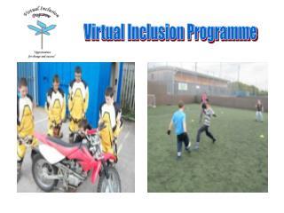Virtual Inclusion Programme