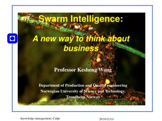 Swarm Intelligence: A new way to think about business