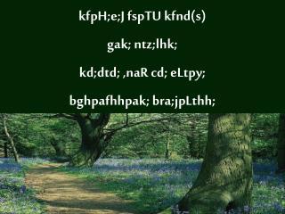 kfpH;e;J fspTU kfnd(s) gak; ntz;lhk;  kd;dtd; ,naR cd; eLtpy;  bghpafhhpak; bra;jpLthh;