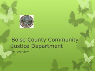 Boise County Community Justice Department