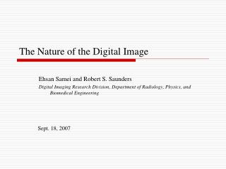 The Nature of the Digital Image