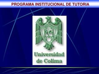 PROGRAMA INSTITUCIONAL DE TUTORIA