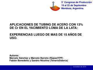 Autores: Marcelo Sánchez y Marcelo Barreto (RepsolYPF)