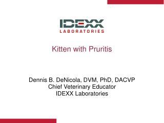 Kitten with Pruritis