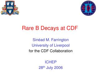 Rare B Decays at CDF