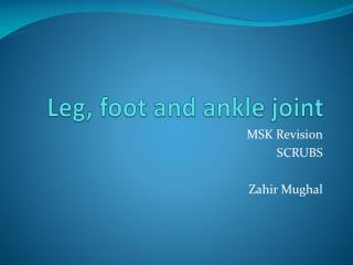 Leg, foot and ankle joint
