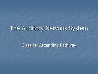 The Auditory Nervous System