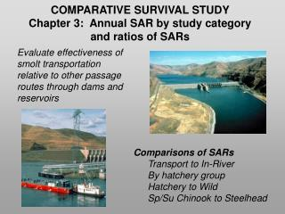 COMPARATIVE SURVIVAL STUDY  Chapter 3:  Annual SAR by study category  and ratios of SARs