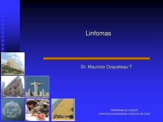 PROGRAMA DE CANCER  PONTIFICIA UNIVERSIDAD CATOLICA DE CHILE