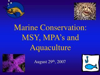 Marine Conservation:   MSY, MPA s and Aquaculture