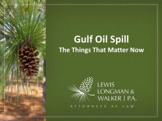 Gulf Oil Spill  The Things That Matter Now